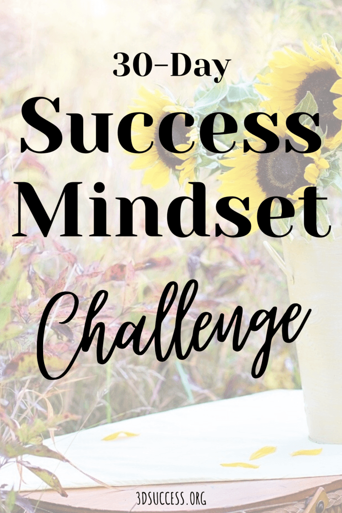 30 Success Mindset Challenge Pin