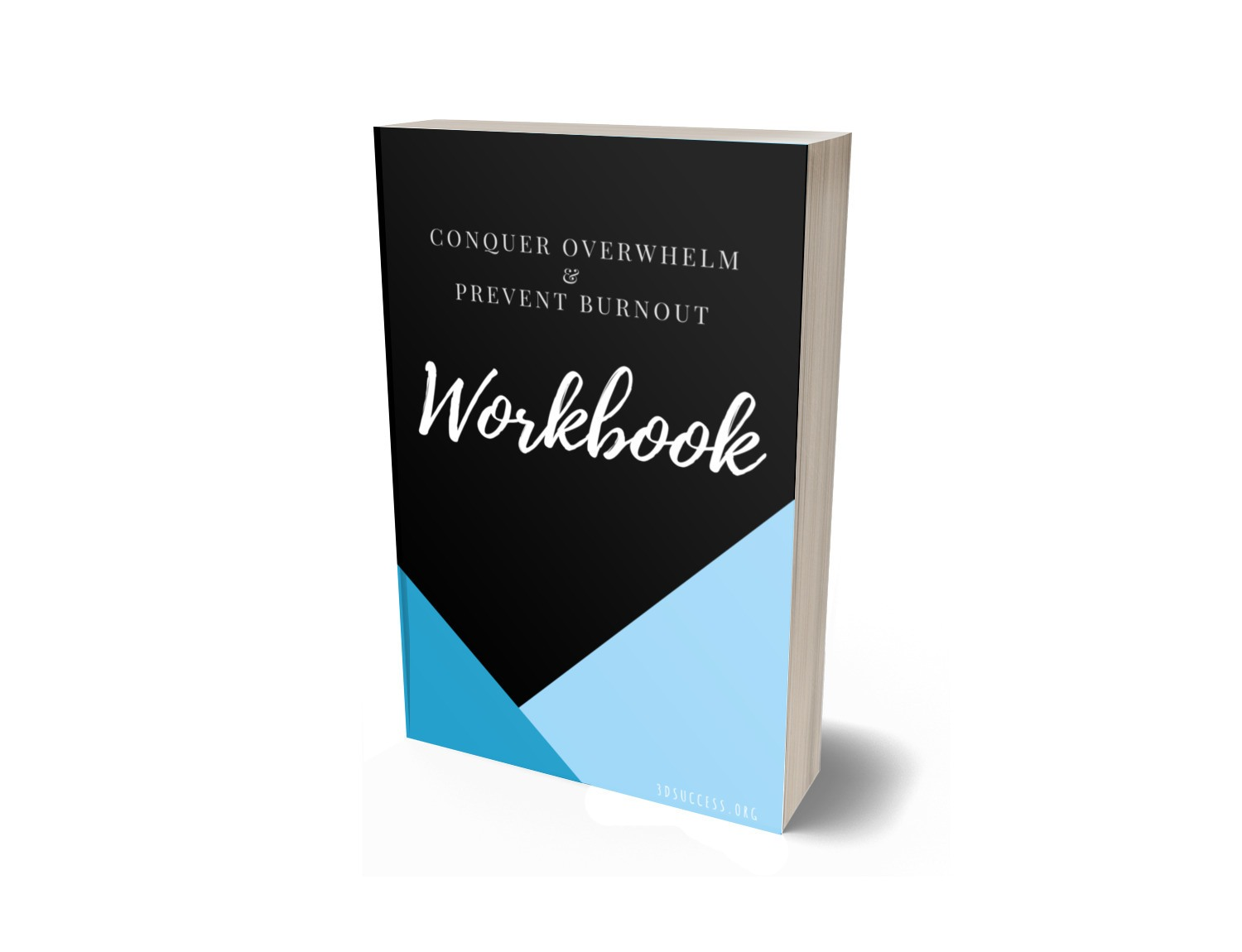 3D Workbook Cover JPG